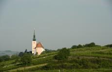 Die Weinstadt Poysdorf