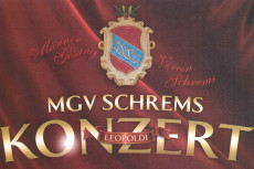 MGV Schrems