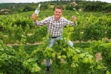 Bio Weinbau Reinthaler