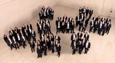 NÖ Tonkünstlerorchester