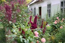 """""""Natur im Garten"""" Fest"""