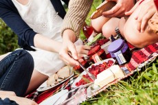 Weinviertler Sommer Genuss Tour
