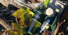 Schober-Wein