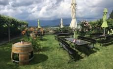 Schöner Garten mit tollem Ausblick über die Weinstadt