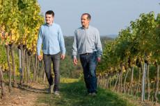 Weinbau Schabasser